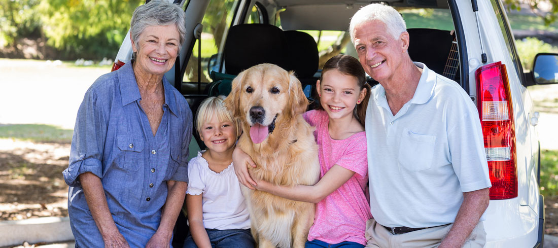 grandparents sit with their grandchildren and dog in back of a car